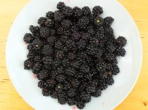 Some of our brambles, not very juicy and a bit scraggy to be honest